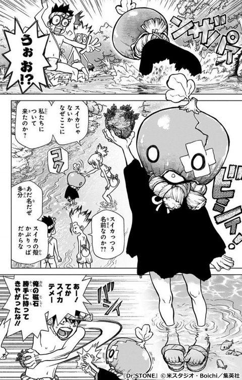 『Dr.STONE』のキャラクター スイカ