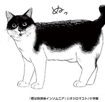 『君は放課後インソムニア』登場人物(猫)ツーちゃん