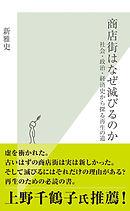 商店街はなぜ滅びるのか〜社会・政治・経済史から探る再生の道〜