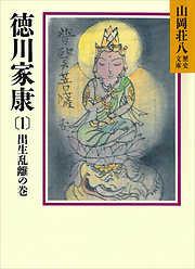 徳川家康-電子書籍
